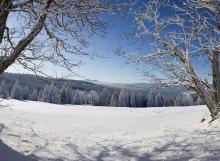 zimni-sumava-10