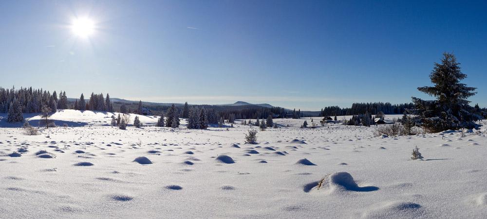 zimni-sumava-13